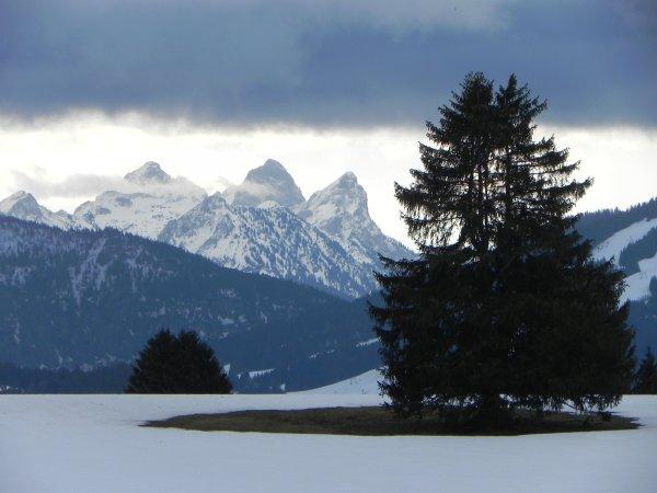 Blick zum Tannheimer Tal