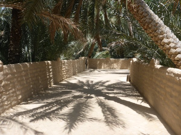 die Oase in Al Ain ist jetzt UNESCO Weltkulturerbe